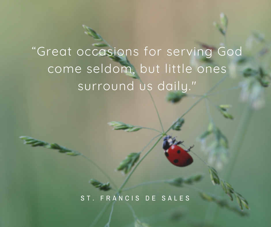 """""""Great occasions for serving God come seldom, but little ones surround us daily._"""